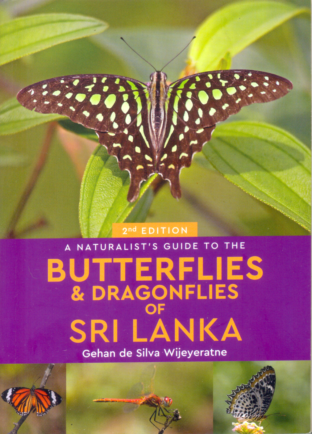 Naturalists Guide To The Butterflies & Dragonflies Of Sri Lanka