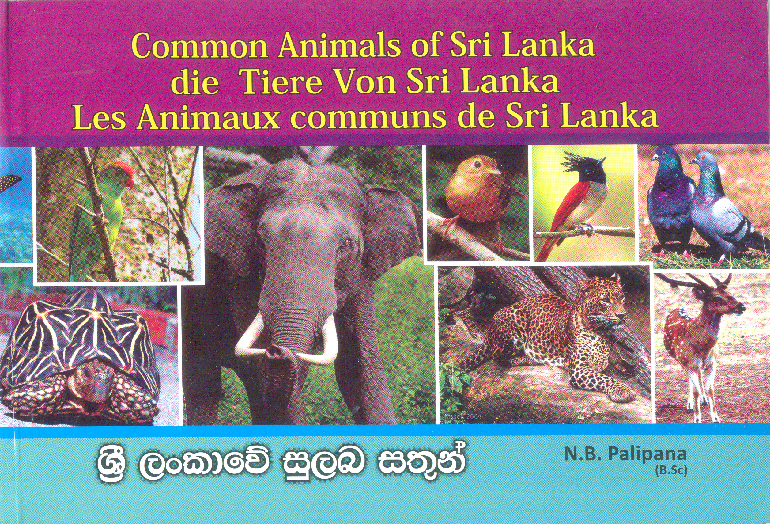 Common Animals Of Sri Lanka Dic Gemeisame Tiere Von Sri Lanka Les Animaux Communs De Sri Lanka