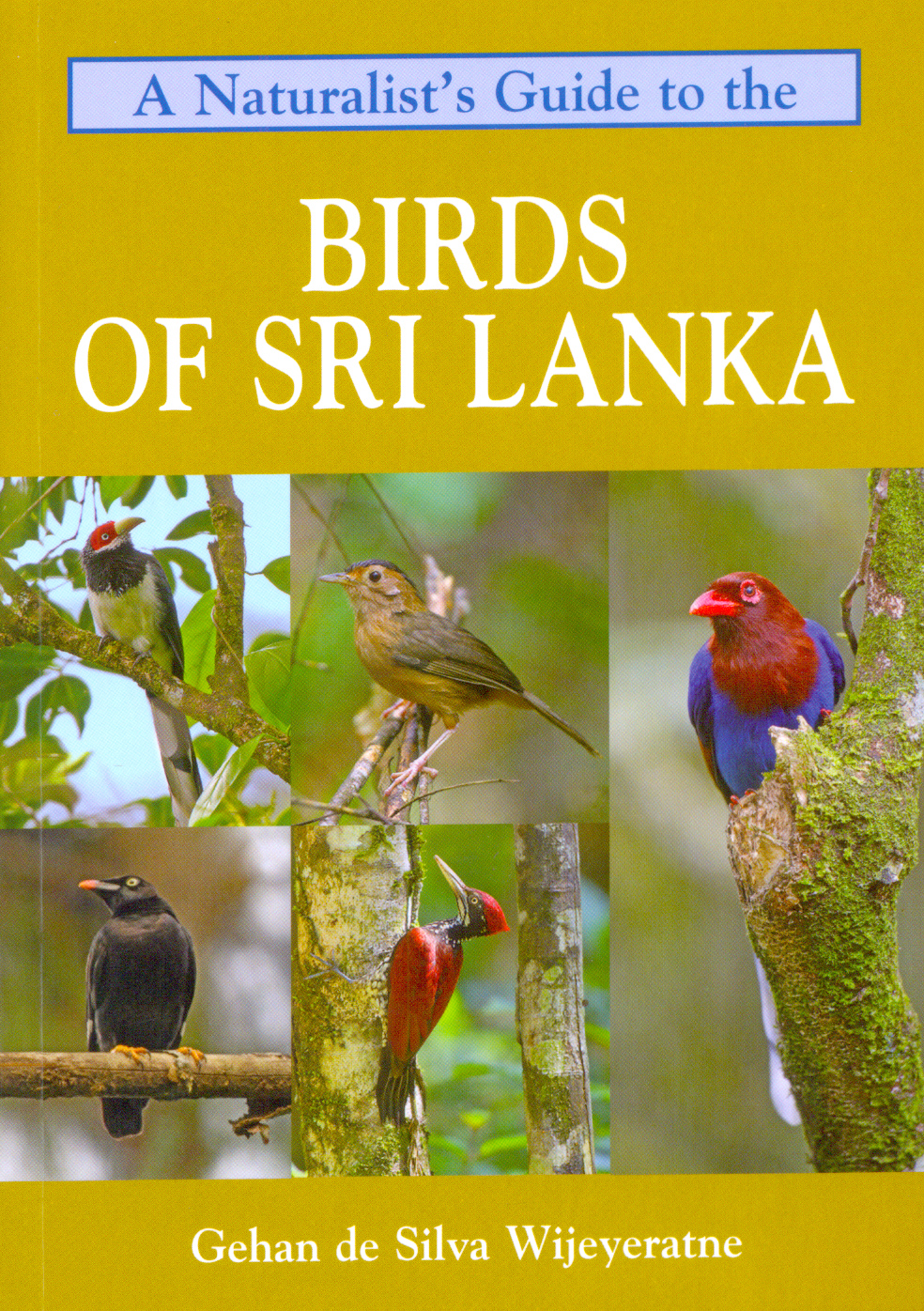 A Naturalist's Guide to the Birds of Srilanka