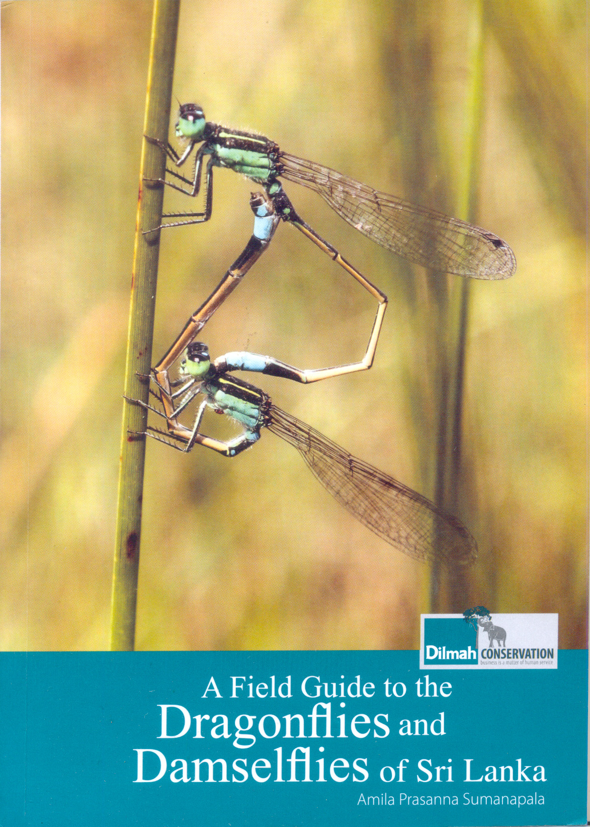 Field Guide to the Dragonflies and Damselflies of Sri Lanka