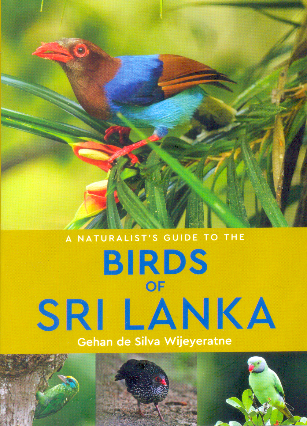 Naturalists Guide To The Birds Of Sri Lanka