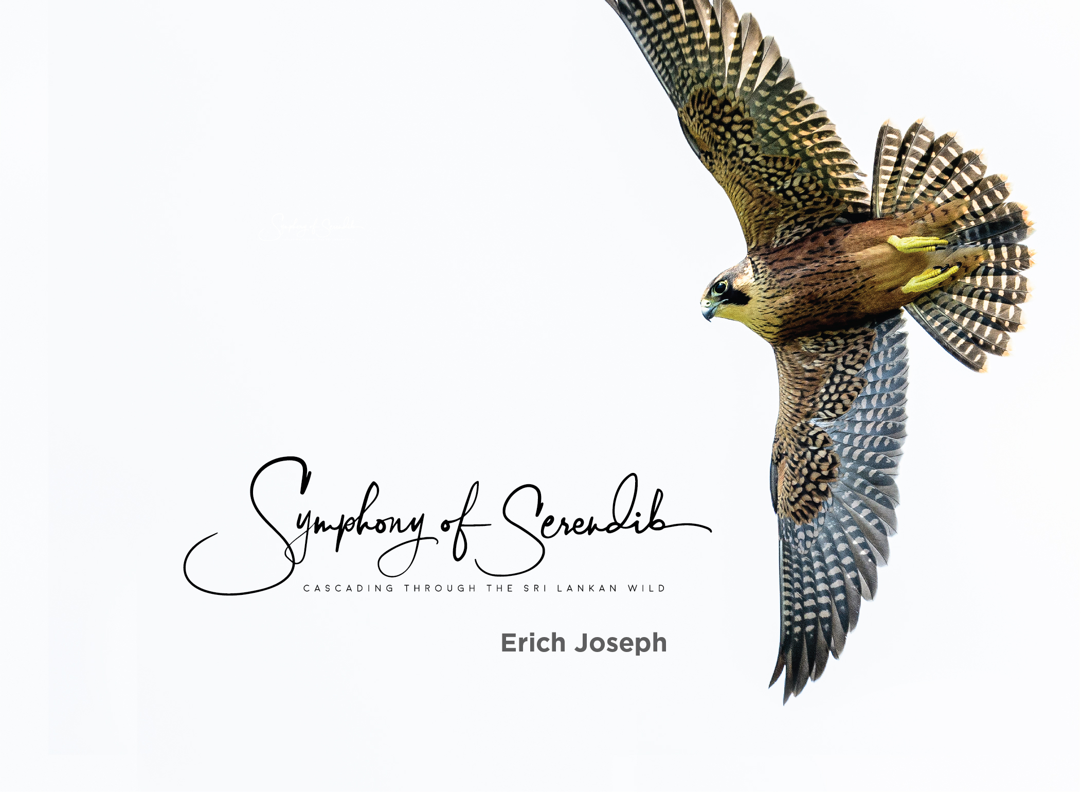 Symphony of Serendib