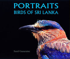 Portraits Birds of Sri Lanka