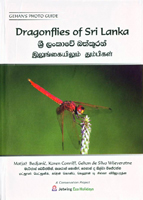 Dragonflies of Sri Lanka