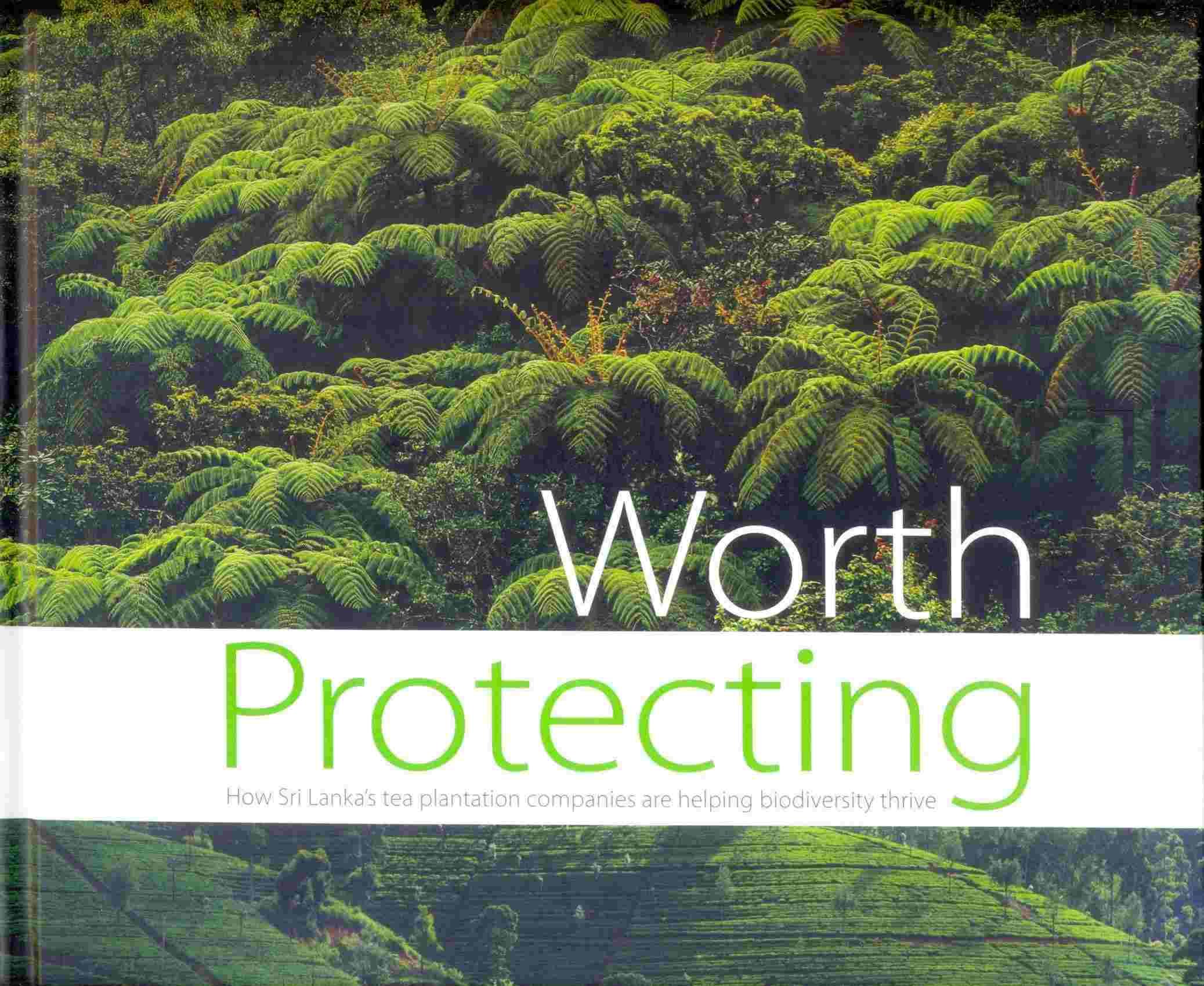 Worth Protecting