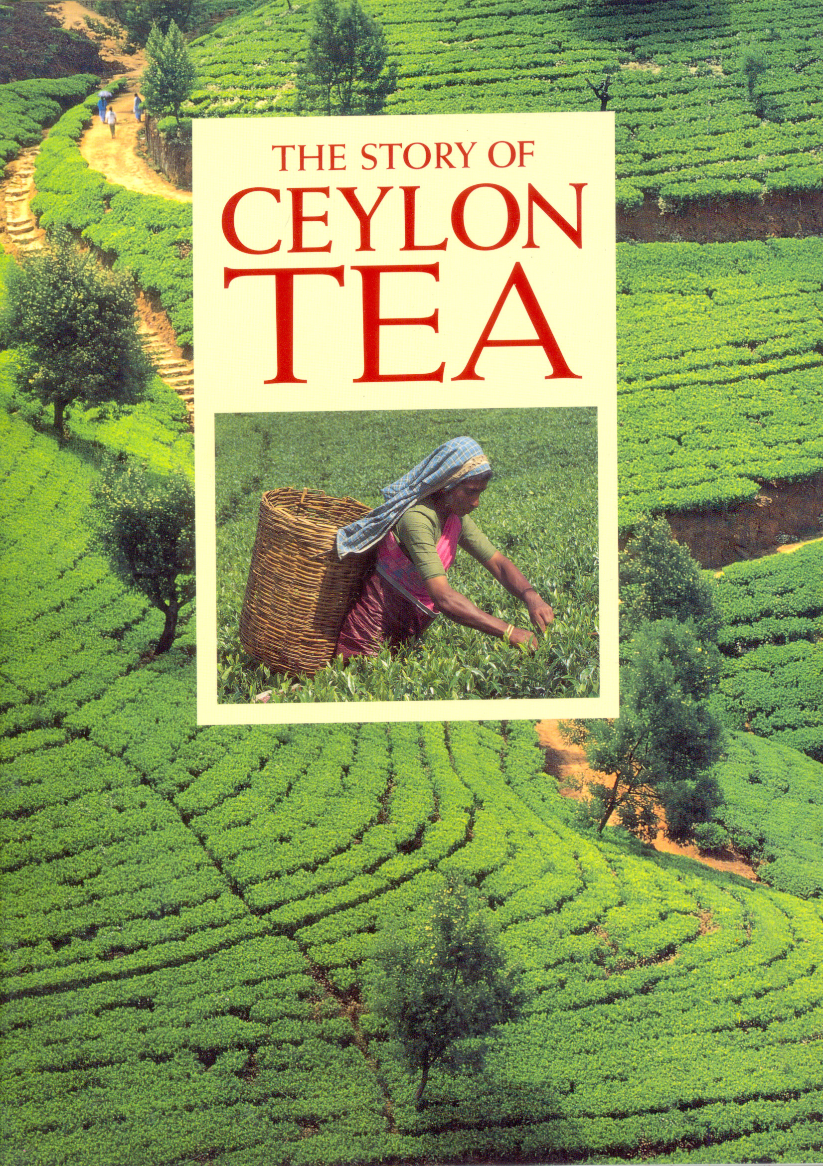 Story Of Ceylon Tea, The