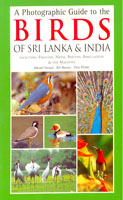 Photographic Guide to the Birds of Sri Lanka & India, A