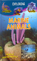 Exploring Marine Animals