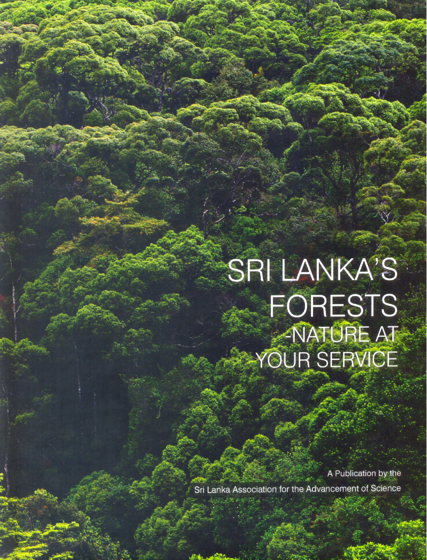 Sri Lanka's Forests - Nature at your service