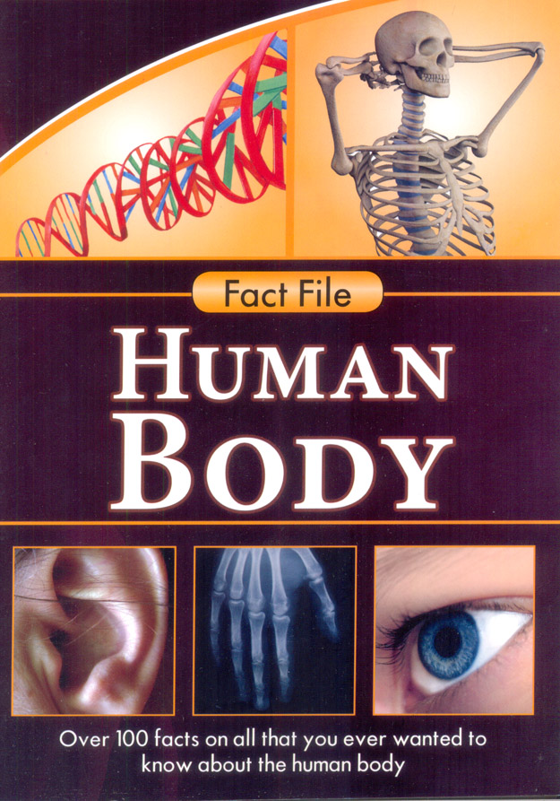 Fact File : Human Body
